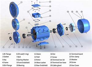 Motor là gì? Động cơ điện không đồng bộ 3 pha là gì