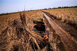 Thiên tai gây tổn hại cho Việt Nam 1,7 tỷ USD