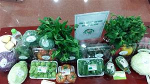Chương trình khởi động du lịch đầu tiên của Việt Nam